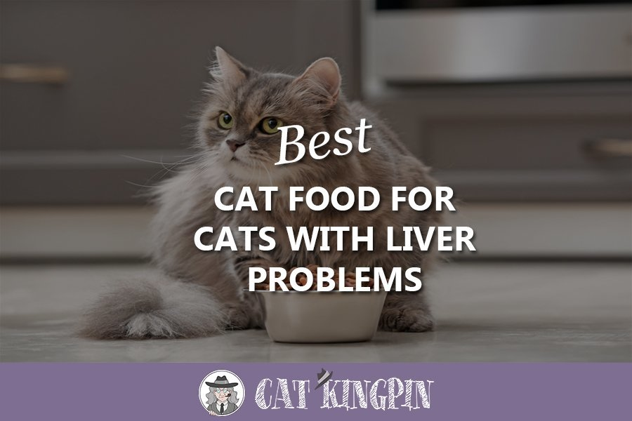 Best Cat Food For Cats With Liver Problems
